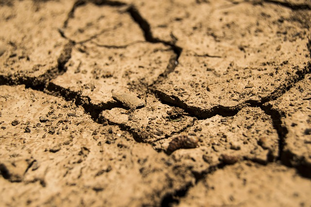 drought-780088_640