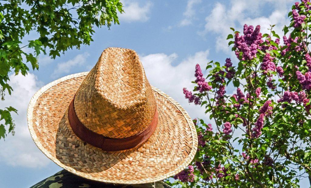 hat-1379590_1280